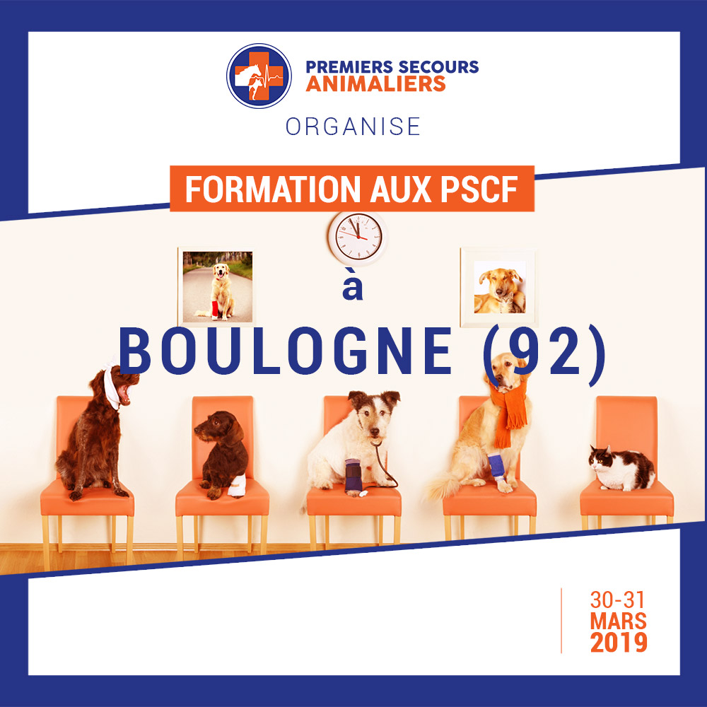 BOULOGNE (92) PSCF 30-31 Mars 2019