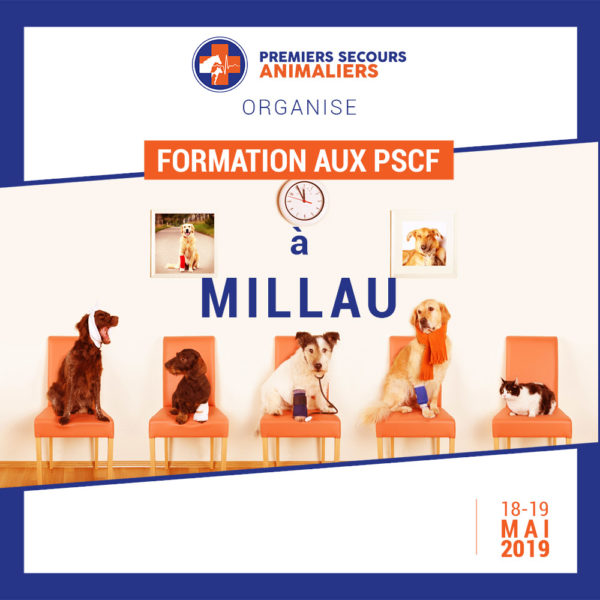 MILLAU PSCF 18-19 Mai 2019