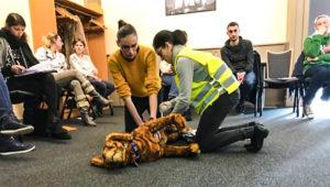 Session de formation Premiers Secours Canin et Félin