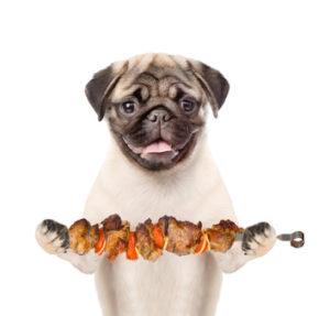 chien pic brochette barbecue danger