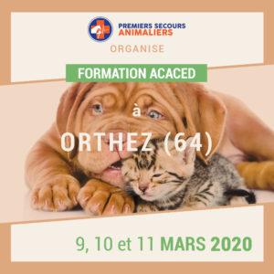ACACED-09-10-11-mars-2020