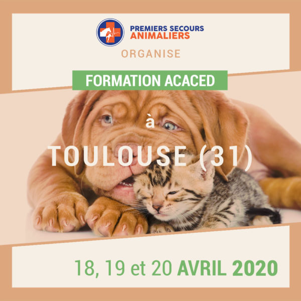 ACACED-toulouse-18-19-20-avril-2020