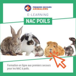 NAC-POILS-en-ligne