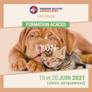 ACACED-Lyon-19-20-juin-2021-(chien-uniquement)