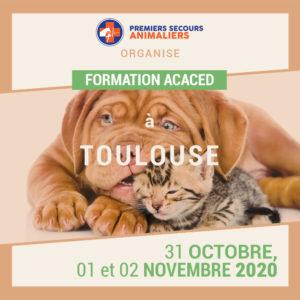 ACACED-Toulouse-31-octobre-1-et-2-novembre-2020
