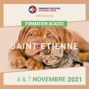 saint-etienne-6-7-novembre-2021